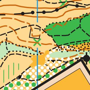GCOM 2019 Santa Brígida map sample - Gran Canaria O-Meeting