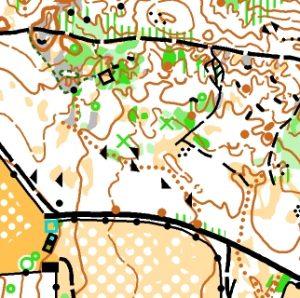 GCOM 2019 Llanos de la Pez North map sample - Gran Canaria O-Meeting