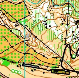 GCOM 2019 Llanos de la Pez South map sample - Gran Canaria O-Meeting