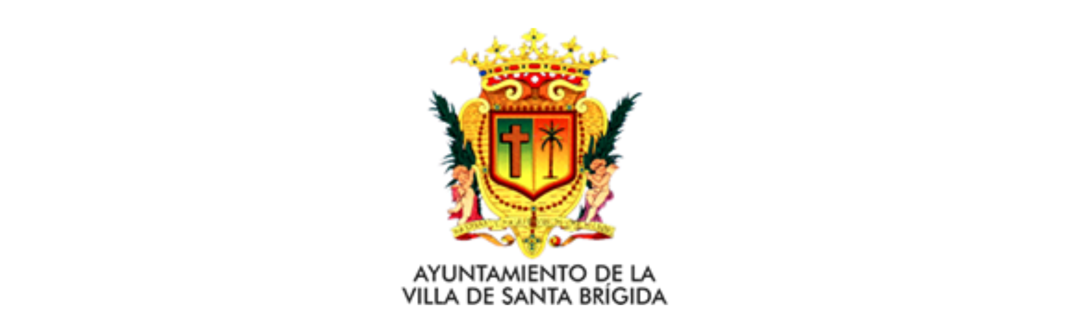 logo ayto Santa Brigida GCOM 2019